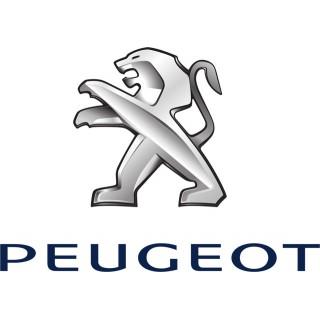 Аэрозольные краски для автомобилей PEUGEOT