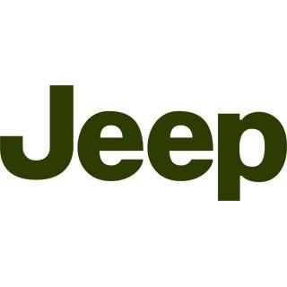 Аэрозольные краски для автомобилей JEEP