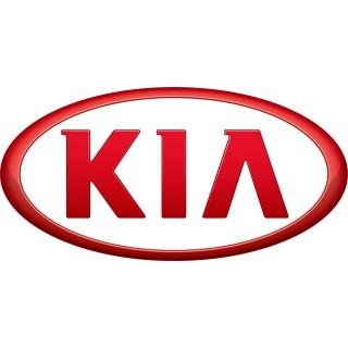 Аэрозольные краски для автомобилей KIA